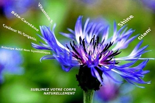«Le « pouvoir germinatif » varie beaucoup […] ; il persiste de quelques jours à plusieurs siècles.» Définition Wikipedia