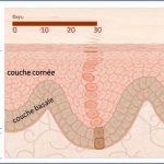 renouvellement de peau
